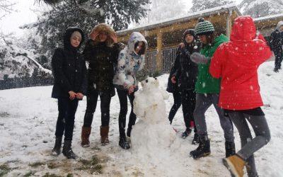 Na sneg po zimsko veselje