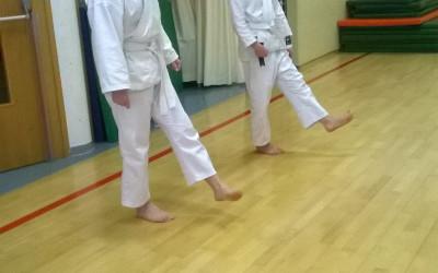 Karate z Evo in Polono
