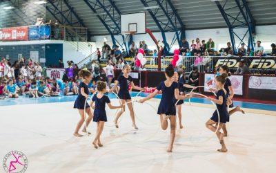 Področno tekmovanje v ritmični gimnastiki in estetski gimnastiki
